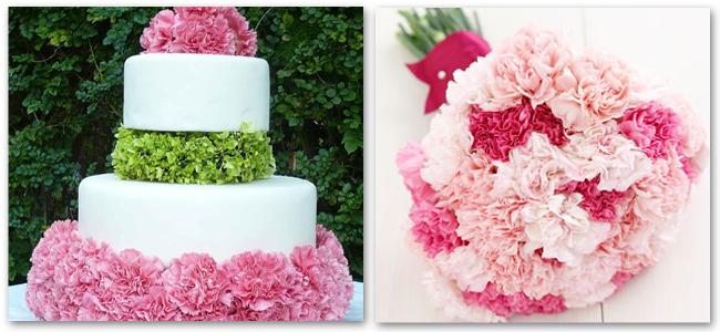 carnation 2 flower power :: we love carnations