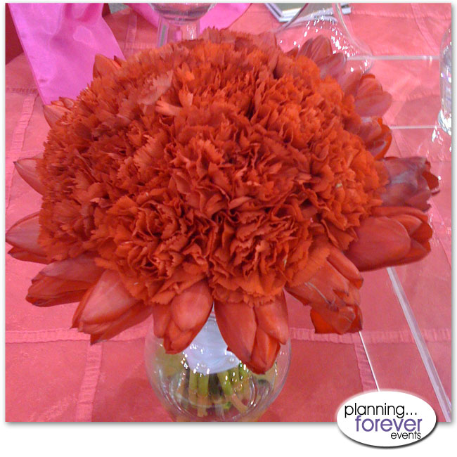 carnation1 flower power :: we love carnations
