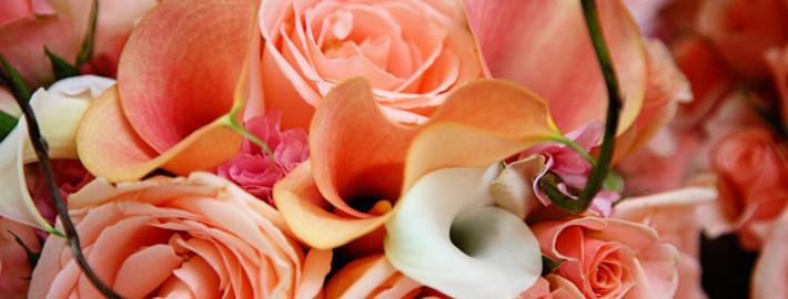 orange-flowers-calla-feature