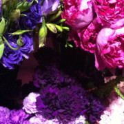 purple-flowers-feature