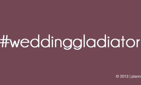 wedding gladiator 495x300 blog
