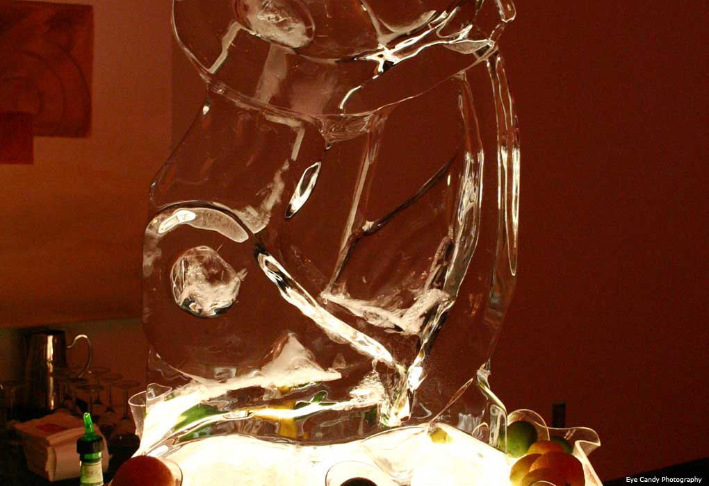 Ice luge wedding